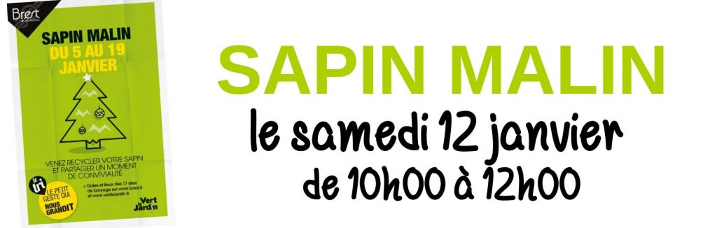 Sapin Malin
