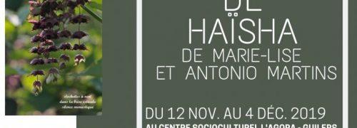 Exposition de Haïsha de Marie-Lise et Antonio Martins