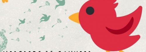 Rencontre pour des moments de bonheur partagé avec les oiseaux du jardin