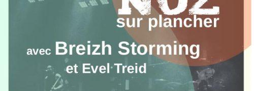 Pleins feux sur la culture bretonne : Fest Noz